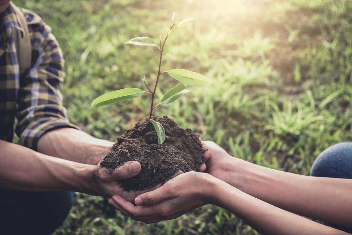 Il biologico preserva l'ambiente