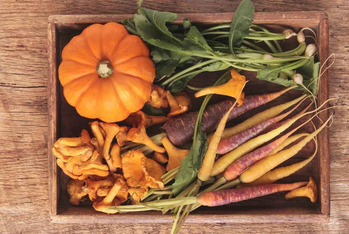 Le bucce delle verdure biologiche