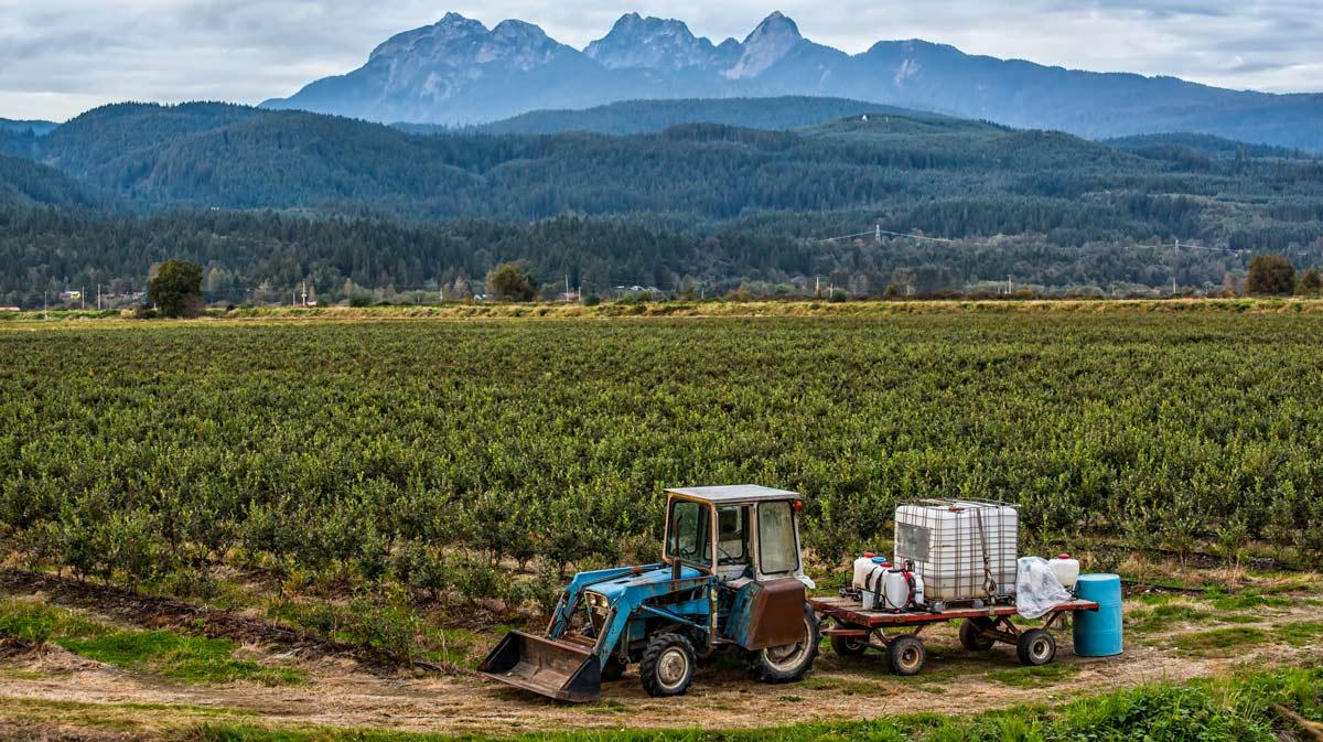 standard adottati dagli agricoltori bio