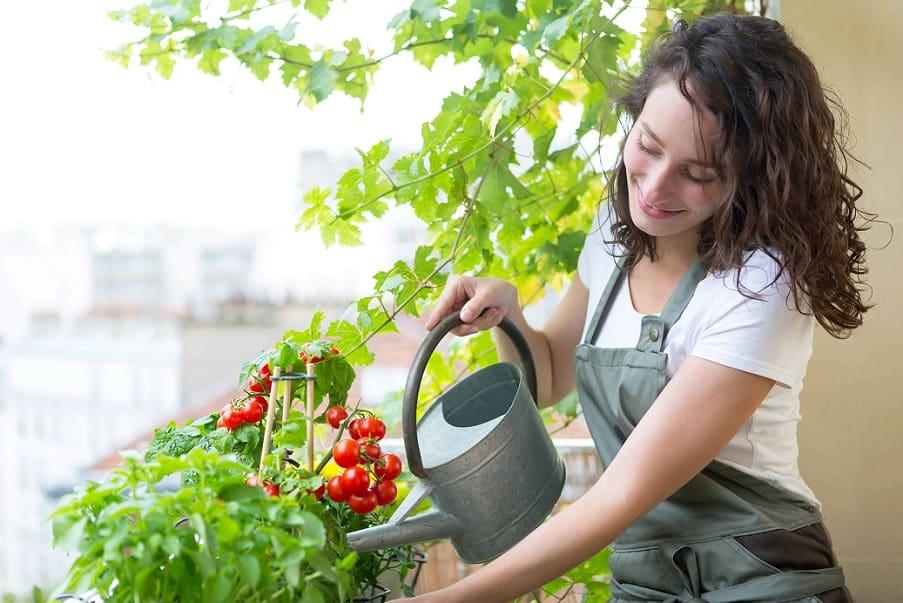 pesticidi naturali - balcone